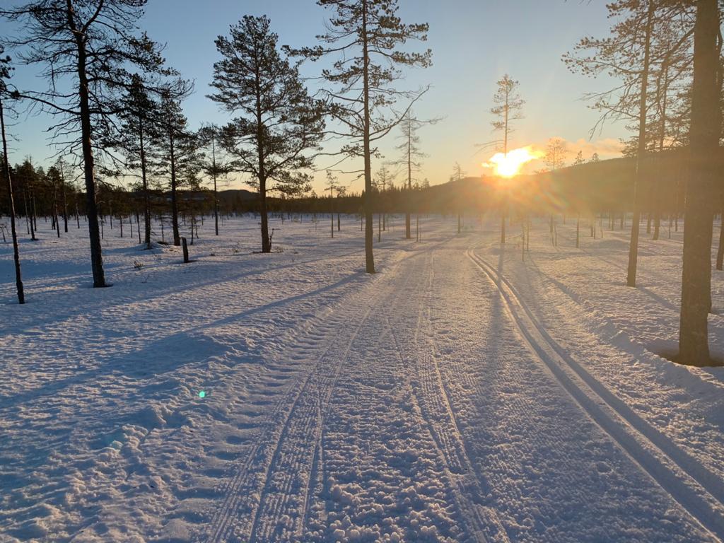 Längdåkning på kvällen i längdskidspåret solen går ner - längdskidor.nu